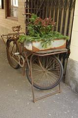 Cykel (rotabaga) Tags: sverige sweden göteborg gothenburg k5 pentax cykel bicycle