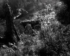 Endovélico, Alentejo, Portugal (Shooting Analog) Tags: largeformat darkroom portugal alentejo black white bw blackandwhite linhof linhoftechnika 4x5 ilford ilfordfp4 analog