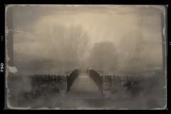 Past Times (Bill Eiffert) Tags: park pictorialist bridge mist trees nature nik pixlr dxo
