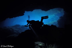 Cenote Eden (blinker1990) Tags: cenote eden tauchen dive diving cave cavern blue hole höhle ausgang spool reel leine luft air loch dunkel dark tank flasche taucher wasser water blau lampe licht light torch maske mask regulator atemregler sidemount abenteuer mexico divemex malte flossen fins sport spas fun holliday urlaub reisen travel amerika bozo