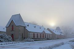 Haras en hiver (Arnadel) Tags: haras hiver neige chevaux lamballe bretagne winter snow stud horses britain