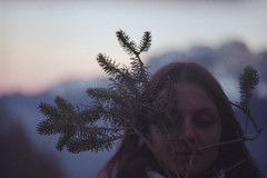 (Silvia Kuro) Tags: sunset tramonto pinetree pine pino winter inverno pink portait ritratto film 35mm analog analogue analogico analogica dream dreamy branches rami nature natura face volto fairytale mountain mountains montagna pini