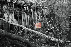 ... unless you're a photographer (Doris Burfind) Tags: portdover abandoned factory trees sign notrespassing onochrome blackandwhite shipyard decay