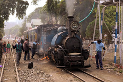 Sukna Service (gooey_lewy) Tags: darjeeling himalayan mountain railway steam tour magazine india narrow gauge sharp stewart b class 040 tank saddle well loco locomotive train rail indian steep hill cart road west bengal charter dhr dhmr joy toy forest jungle 782 sun light railroad tree people grass haze mist tindaria works tindharia up staff crew sukna station oiling point cylinder spanner