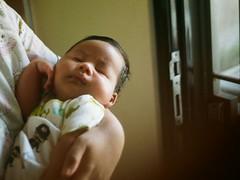 Baby bolo bolo (r.riddo) Tags: analog yashica35gx 35mm agfavista film yashica