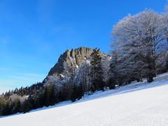 a Kakastaréj felé / to Creasta Cocoşului peak (debreczeniemoke) Tags: tél winter hó snow túra hiking erdő forest fa tree hegy mountain gutin gutinhegység gutinmountains sziklabérc piton kakastaréj creastacocoşului olympusem5