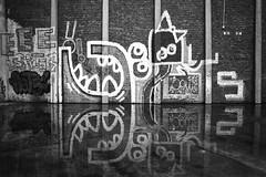 that sinking feeling (chipsmitmayo) Tags: nikon f100 f28 ilford fp4 film analog schwarzweiss blackandwhite labor 35mm kleinbild münster westfalen hafen harbour osmo graffiti piece wall vogel reflektion spiegelung wasser mauer kunst art streetart nikkor 24mm