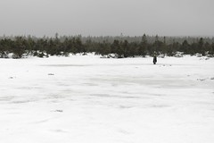 Bog Pond Crossing (all martn) Tags: erzgebirge osterzgebirge oremountains krusnehory winter schnee snow fatbike fettrad mtb