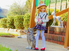 Witch's Uniform (Forest_Daughter) Tags: alchemic labo unoa sist volks mini dollfie dream bjd balljointed doll hybrid