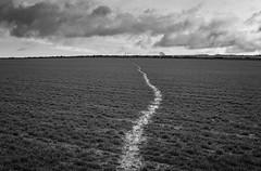 Elton Common (l4ts) Tags: landscape derbyshire peakdistrict whitepeak eltoncommon path farmland crops blackwhite monochrome cloudscape clouds