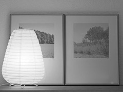 Minimal (でんたく) Tags: light tableaux japanese lamp noir blanc black white olympus winterthur