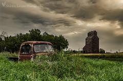Warwick AWP Ford (Stubble Jumper) Tags: prairie alberta grainelevator albertawheatpool wheatpool ford abandoned rust history