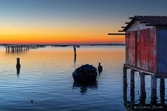 Getting lost watching the sun sinking on the winter's sea. (Cristiano Busato) Tags: winter sea italy veneto polesine sundown tramonto