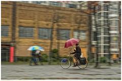 umbrella cyclist