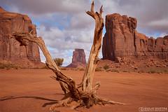 Monument Valley (Giulio Giuffra) Tags: monumentvalley usa america utah usaontheroad viaggi paesaggio landscape
