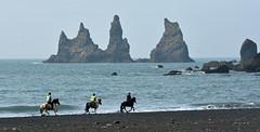 Iceland (a.penny) Tags: vik iceland island apenny nikon d7100 pferde horse
