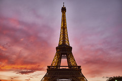 Tall and Curvy (abhishek.verma55) Tags: eiffeltower france paris ©abhishekverma sky travel travelphotography europe eurotrip traveller landmark monument love romantic sunset red skylovers flickr photography art structure architecture architectural architecturelover beautiful beauty beautifulsky colourful colour fujifilmxt20 fuji cloudy moody evening famousplaces lights outdoor outdoors outside old scenic scenery travelphotos urban urbanlandscape vacation wanderlust wonderoftheworld wonder tourism magical romance heritage