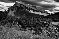 Mount Rundle from the Trans-Canada Highway (Black & White, Banff National Park) (thor_mark ) Tags: nikond800e day3 triptoalbertaandbritishcolumbia banff banffnationalpark lookingse silverefexpro2 blackwhite capturenx2edited colorefexpro mountrundle rockymountains canadianrockies southerncontinentalranges southbanffranges rundlepeaks outside nature landscape blueskieswithclouds rollinghillsides mountains mountainsindistance mountainsoffindistance cloudsaroundmountains hillsides hillsideoftrees evergreens trees grassymeadow vermillionlakes lakes portfolio project365 transcanadahighway transcanadahighway1 transcanadahwy1 albertahighway1 roadsidepulloff mountainside mountainvalley bowvalley alberta canada