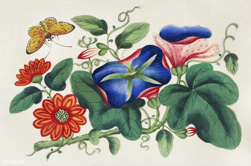 Chinese painting featuring flowers and a butterfly (ca.1800–1899) from the Miriam and Ira D. Wallach Division of Art, Prints and Photographs: Art & Architecture Collection. Original from the New York Public Library. Digitally enhanced by rawpixel.