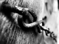 (danjamesphotography) Tags: chain rust wood weathered