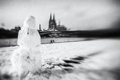3371 (Elke Kulhawy) Tags: köln kölnerdom schnee snow city stadt cologne colognecathedrale blackandwhite monochrome bw bnw bwphotographie bnwbw schneemann weiss white rhein deutz lensbaby lensbabycomposer