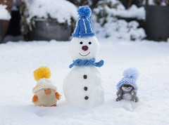 Chickpea & Feliks made a snowman ... (Chickpeasrule) Tags: snowman toy chickpea sloth needlefelted snow hat scarf