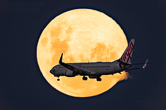 VH-BZG Virgin Australia Boeing 737-8FE 'Vivonne Bay' crosses through the Near Full Waxing Gibbous Moon (99.8%). (ePixel Aerospace) Tags: vhbzg virginaustralia boeing7378fe boeing boeing737 b737 vivonnebay waxinggibbousmoon snowmoon moon aircraft brisbane australia flight va977