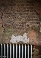 The Original Brick in the Wall (KRHphotos) Tags: swannanoapalace architecture abandoned virginia stilllife