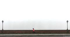 Fog (sladkij11) Tags: nebbia streetphotography firenze lungarno iphone