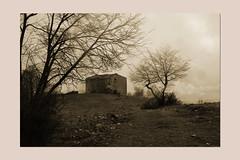 over the hill (sandrorotonaria) Tags: ciociaria winter fog rain ruin tree