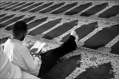 verse of the day (bostankorkulugu) Tags: reading book quran alaqsamosque templemount jerusalem carpet islam holyland israel islamicarchitecture mosque man arab palestine muslim