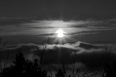 Cortona (screen_tag) Tags: bw canon toscana tuscany italy cielo nebbia tramonto panorama landscape fog abstract sunset sun sky cortona
