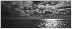 Immingham from Hessle (Mallybee) Tags: fuji fujifilm xt100 16mm f14 fujinon prime apsc bayer xmount immingham bw blackandwhite blackwhite panorama sky sea mallybee humber estuary