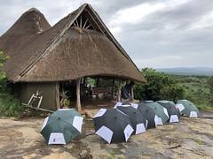 Lodge at Lake Mburo