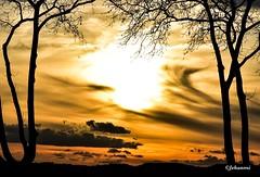 Paysage (Jehanmi) Tags: paysage landscape sunset coucherdesoleil arbres trees color couleur nuage cloud ciel nikon photography naturephotography nature thebeautyofnature sky dreamscape skyscape