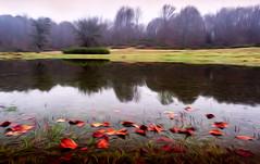 urbasa 10 (juan luis olaeta) Tags: paisajes landscape natura photoshop ligthroom water agua urak art oleo