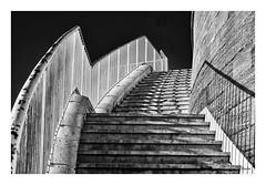 Les racines du ciel (litang13) Tags: marseille city ville town escalier staircase black monochrome mono bw b w r