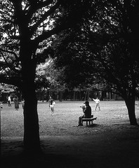 The lonely trumpet player (lebre.jaime) Tags: japan tokyo setagayaku park 日本 東京都 世田谷区 世田谷公園 trumpet player tree analogic film120 6x6 mf mediumformat positive blackwhite bw noiretblanc pb pretobranco fujifilm fujichrome fujiprovia iso100 rdp hasselblad 503cx planar cf2880 epson v600 affinity affinityphoto