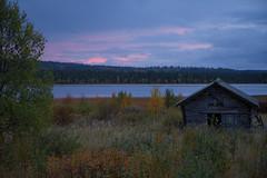 Lapland_Day2_Muonio_20180911_IMGS4781_s (Andrew-Holloway) Tags: lapland muonio autumn torassieppi