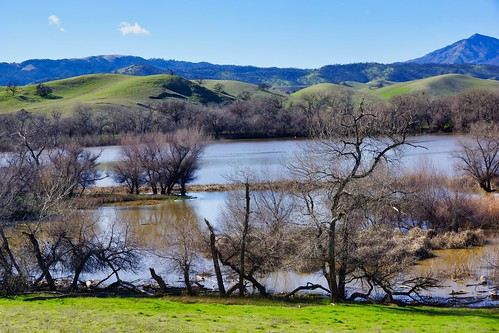 2019-01-21 - Landscape Photography, Mount Diablo, Set 8