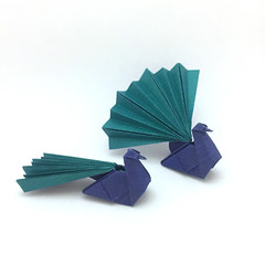 Origami Peacocks (Orimin) Tags: origami paper craft papercraft art handmade animal bird peacock two simple tail green blue beak mindaugas cesnavicius