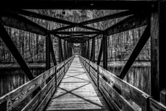 20190406-DSCF4477-2 (Wethersnaps Photography) Tags: heres another classic bridge photo from tims ford state park the architecture draws you guides other side fuji xh1 | ƒ71 1125 18mm iso200 project 2 bridges walkways wethersnapscom