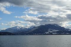 Bauges @ Petit Port @ Annecy-le-Vieux (*_*) Tags: europe france hautesavoie 74 annecy annecylevieux savoie afternoon january hiver winter 2019 cold lacdannecy lakeannecy petitport bauges mountain lac lake
