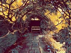 Wysteria Walk (Snapshooter46) Tags: wysteriawalk silentspace waterperrygradens oxfordshire photosketch gardenseat canopy