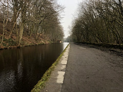 Along the Hudderfield Canal - Marsden to Slaithwaite (mikeyashworth) Tags: canal canaltowpath towpath huddersfield huddersfieldnarrowcanal marsden slaithwaite water kirkless westyorkshire landscape winterlight still calm mikeashworth distance trees