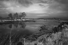 Rannoch Moor. (https://www.fujipixie.com) Tags: fuji xe1 18mm scotland landscape