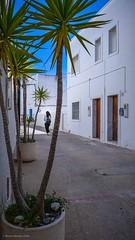 """Huyamos de la ciudad..."".Serie en Agua Amarga (Almería). (alfonsoscg) Tags: fujifilm xt20 xc1650mmf3556 ois ii ƒ71 201 mm 1500 200"