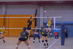 2019 Armed Forces Volleyball Championship (Armed Forces Sports) Tags: 2019 armedforces volleyball championship fortbragg nc army navy airforce coastguard uscg usaf usavolleyball sports unitedstatesofamerica
