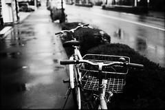 雨の自転車 (frenchvalve) Tags: 雨 自転車 rain bicycle film filmphotography analog 35mm monochrome bnw rangefinder fixedlens
