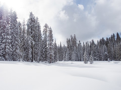 Yosemite National Park (dan tsai) Tags: snowshoe olympusomdem5 em5 landscape winter nature nationalpark mountains snow trees waterfall travel hiking olympus yosemite yosemitenationalpark portrait mountain omd